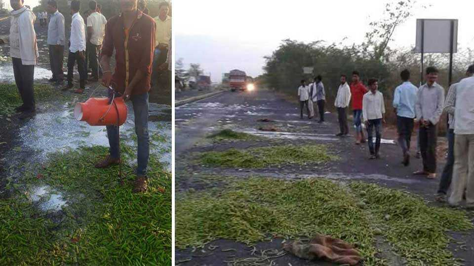 nanded news marathi news marathawada maharashtra farmer strike