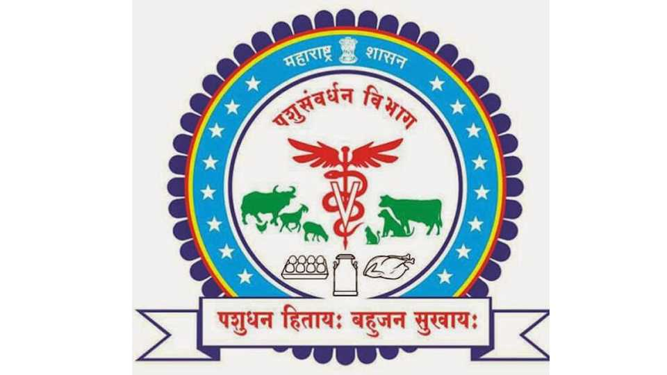 Continuous contract for Maharashtra husbandry Development Board for one company