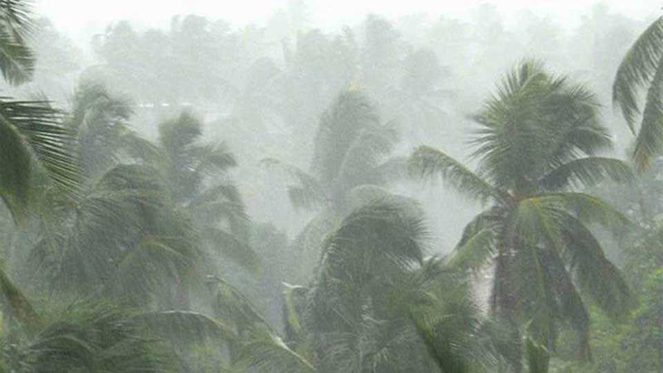 The possibility of heavy rains till Konkan, in central Maharashtra, till Saturday