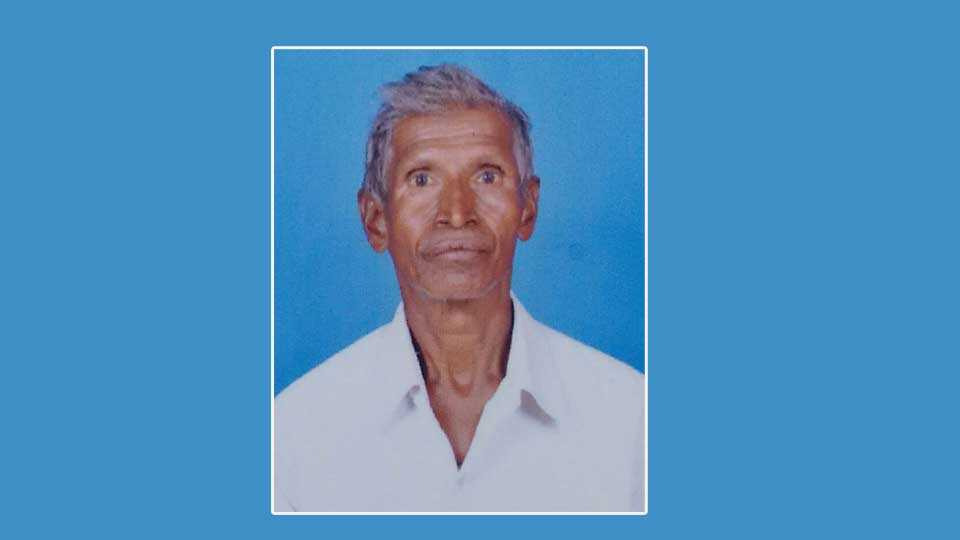 Kolhapur news marathi news sakal news warkari news