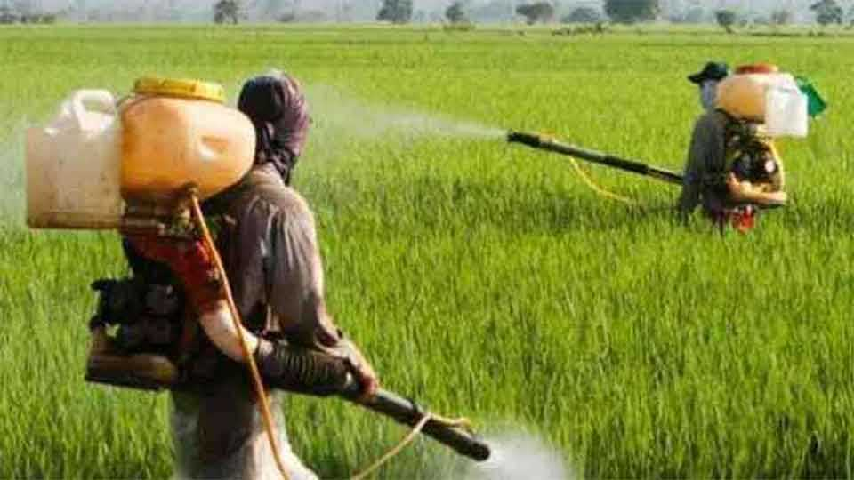 Avoid the use of chemical fertilizers