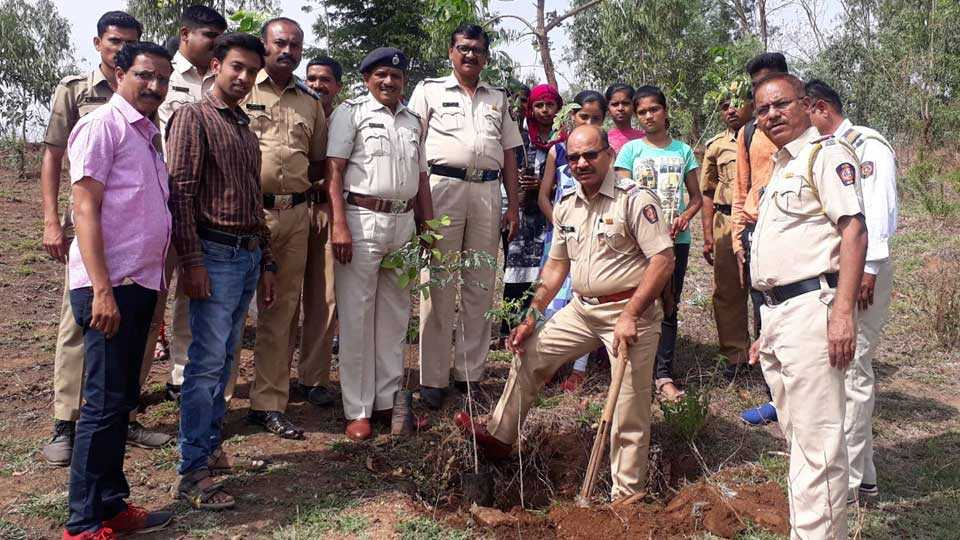 Plantation from Environment Day