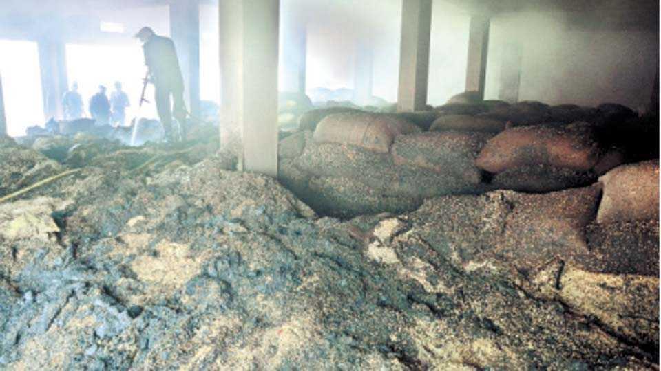 कोंढाळी /बाजारगाव - शॉर्टसर्किटमुळे लागलेल्या आगीमुळे भक्ष्यस्थानी ठरलेले गोदामातील बियाणे.