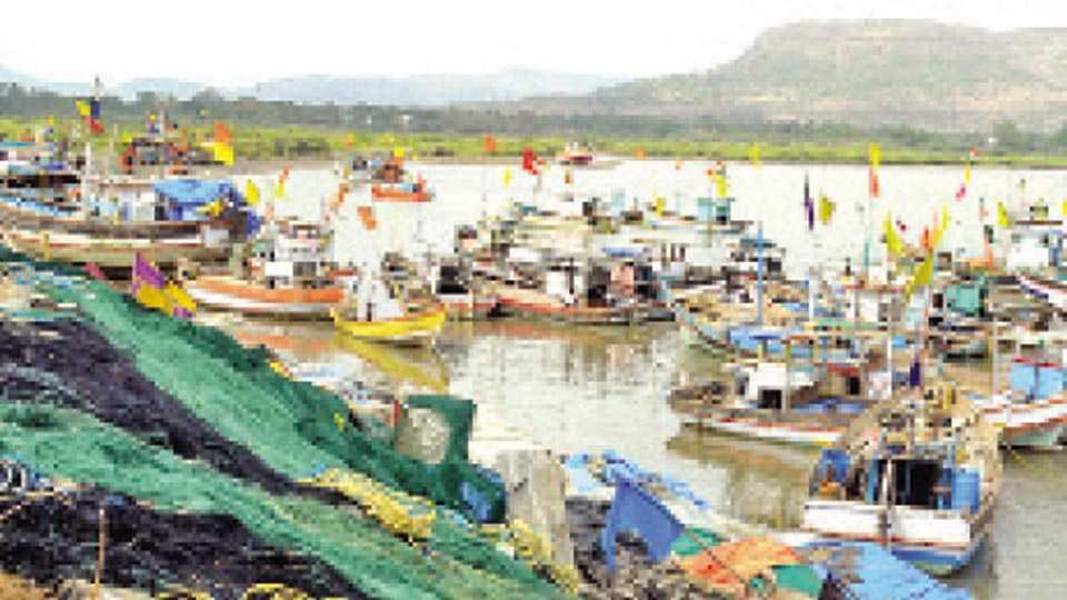 अलिबाग - हवामान खराब असल्यामुळे येथील समुद्रकिनाऱ्यावर मच्छीमारांच्या थांबलेल्या नौका. (छायाचित्र - समीर मालोदे)