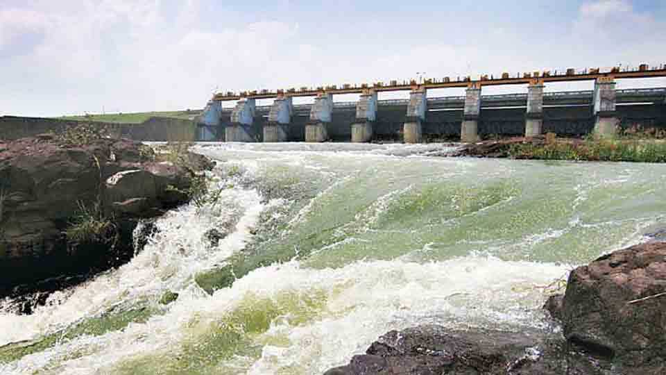Gangapur dam has not been properly protected even after threat