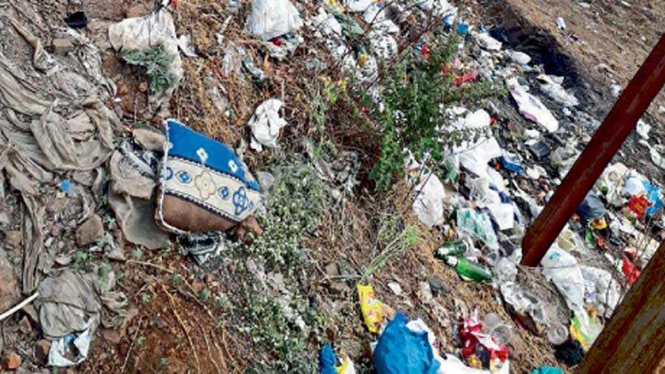 तळेगाव स्टेशन - यशवंतनगर-कातवी रस्त्याच्या कडेला साचलेला कचरा.
