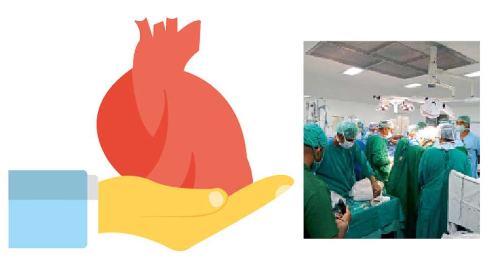 Heart-Transplantation