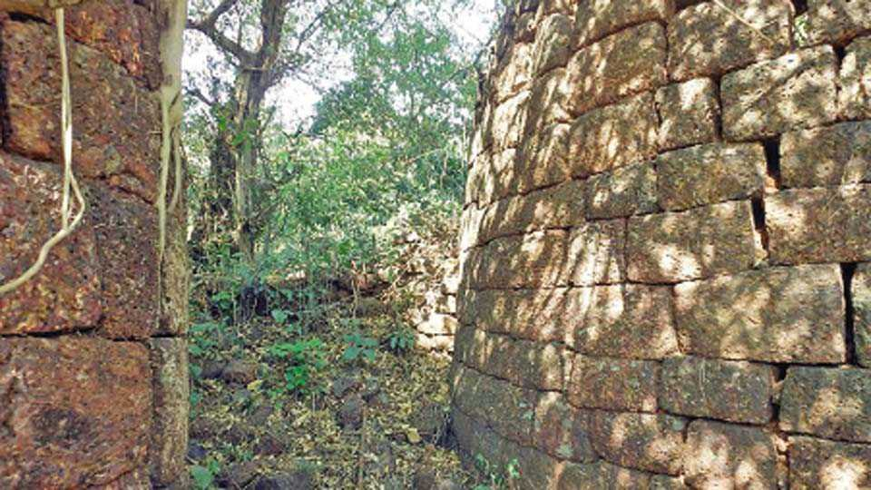 साटवली येथील ऐतिहासिक गढीचे भग्न झालेले प्रवेशद्वार.