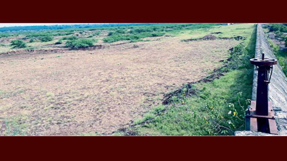 मायणी - पावसाळा संपल्यानंतरही ब्रिटिशकालीन तलाव पाण्याविना कोरडाच आहे.