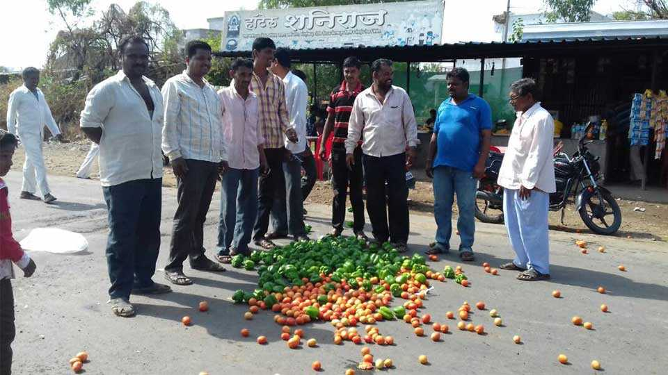 nashik news breaking news farmer strike marathi news maharashtra news farmerstrike begins