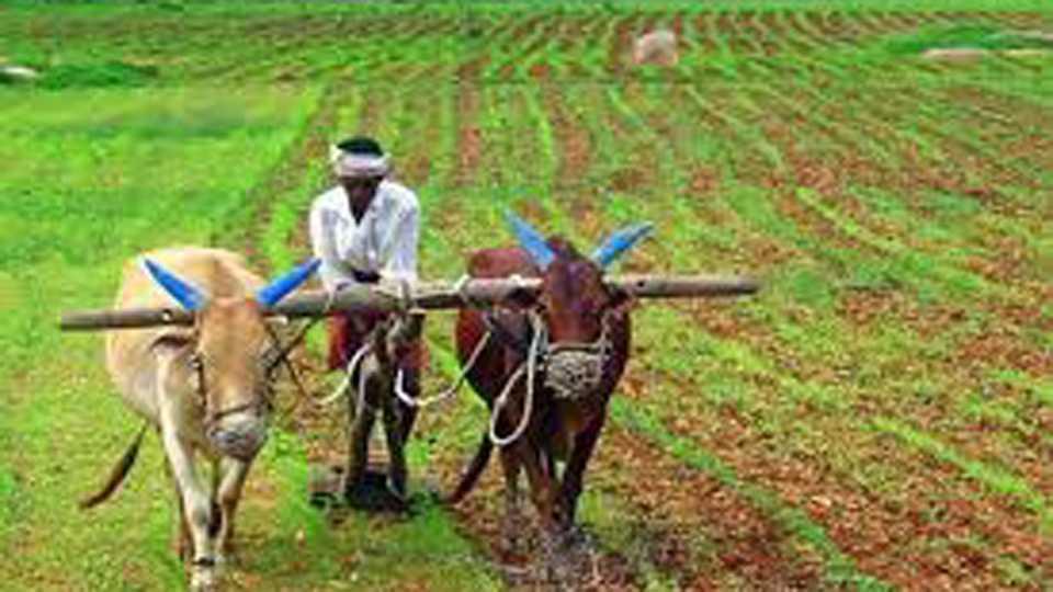 Jhel Bharo Satyagraha of the Farmer Sukanu Committee across the state
