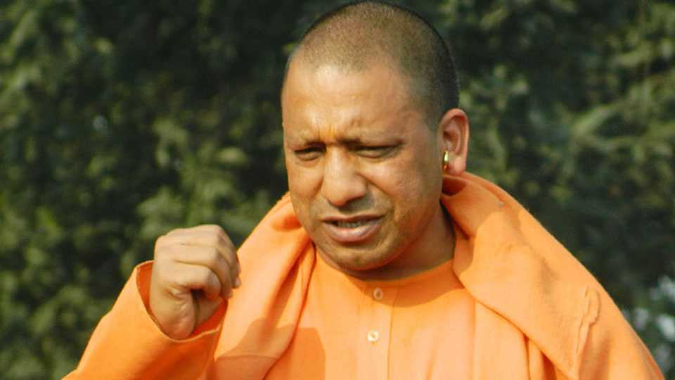 cow slutter marathi news up news india news yogi adityanath