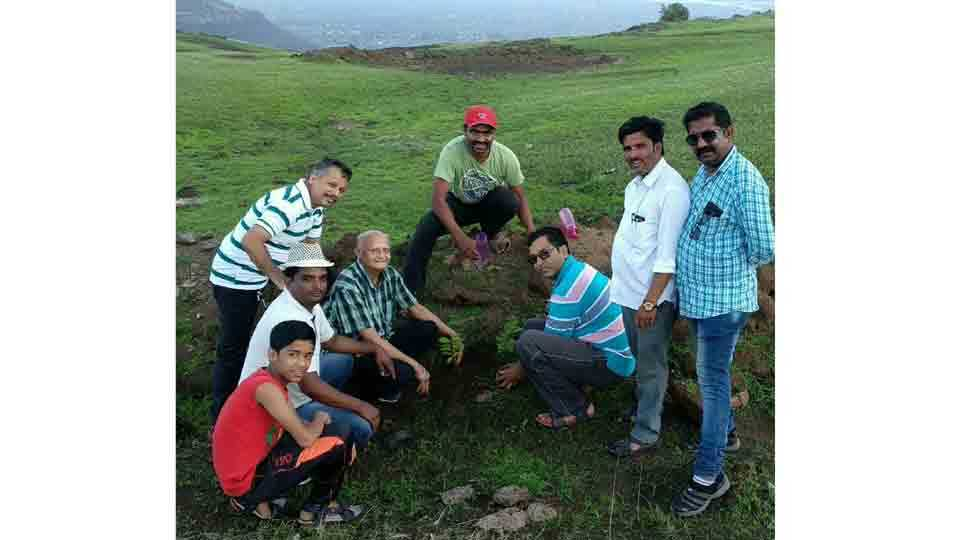 Celebrating Doctor Day by planting trees on the hill
