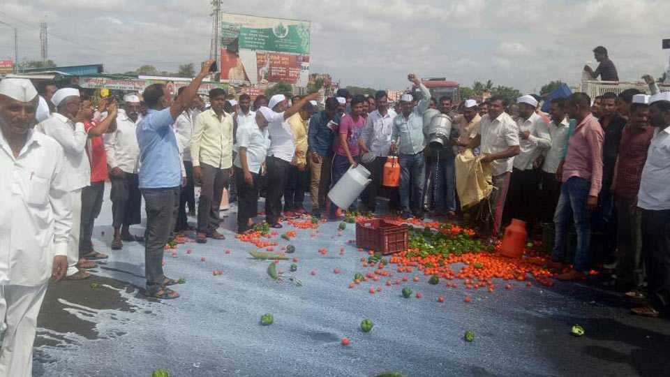 nashik news farmer strike continues in nashik district