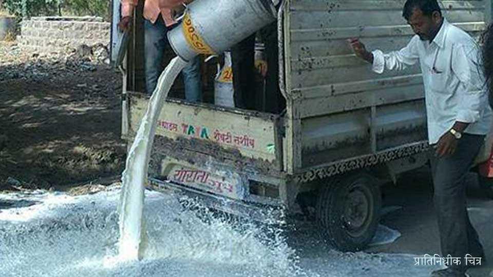 bhusawal news jalgaon news farmet agiation farmer strike marathi news maharashtra news