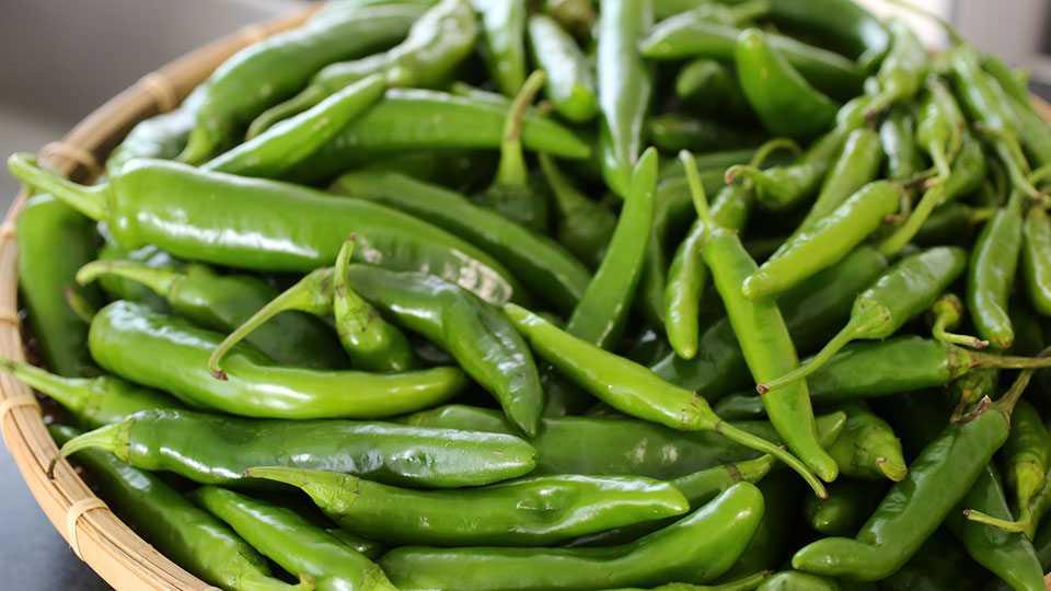 green-chili