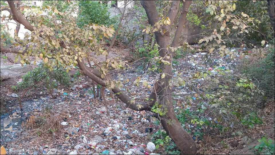 हडपसरः नाल्यामध्ये प्लास्टिकचा कचरा मोठया प्रमाणात साठला आहे. त्यामुळे पाण्याचा प्रवाहाला अडथळा निर्माण झाला आहे. त्यामुळे अनारोग्यकारक परिस्थिती निर्माण झाली आहे.