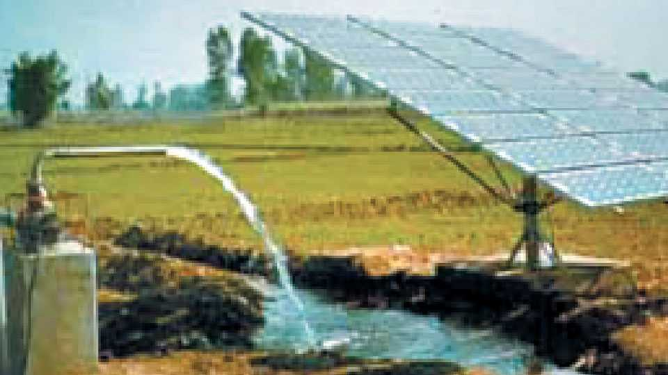 malshiras-solarenergy