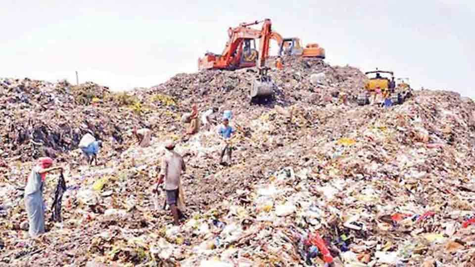 There is no enforcement of orders on public interest litigation of garbage in Mumbai