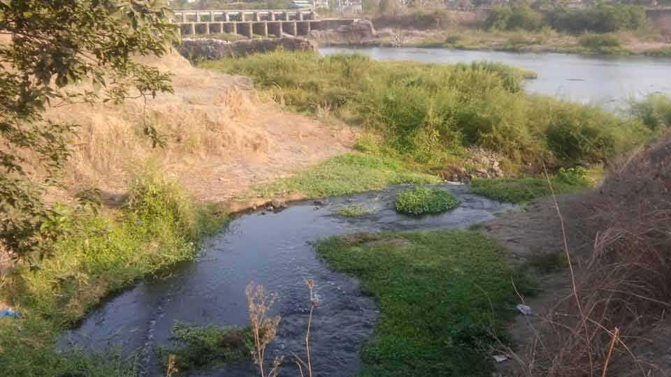 patalganga-river
