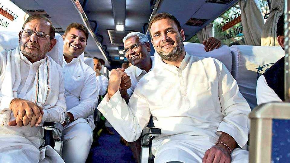 rahul gandhi congress bhp rahul team marathi news