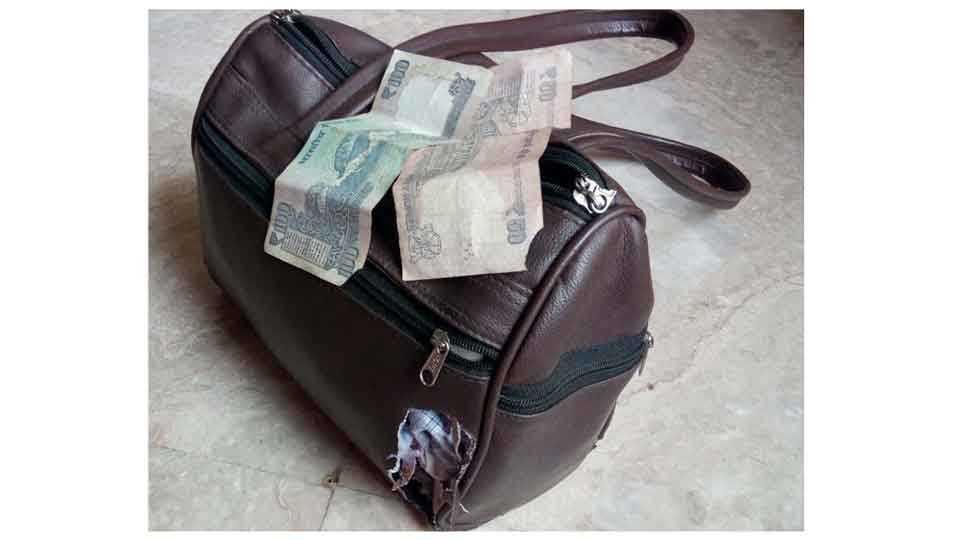 महालक्ष्मी एक्सप्रेसमध्ये उंदरांनी कुरतडलेली बॅग आणि नोटा
