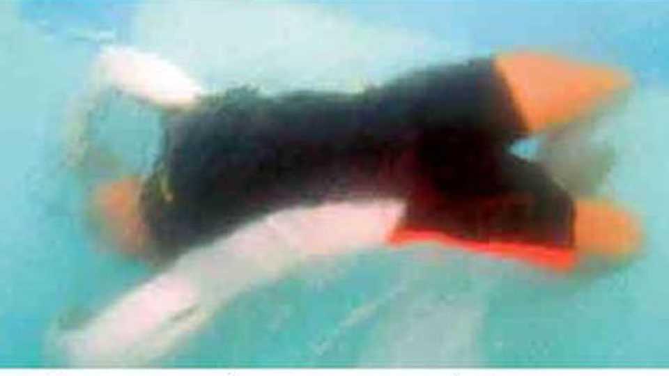 under water yoga.jpg