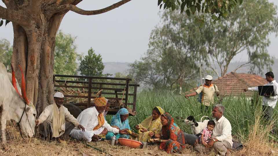 agri farmer peasant
