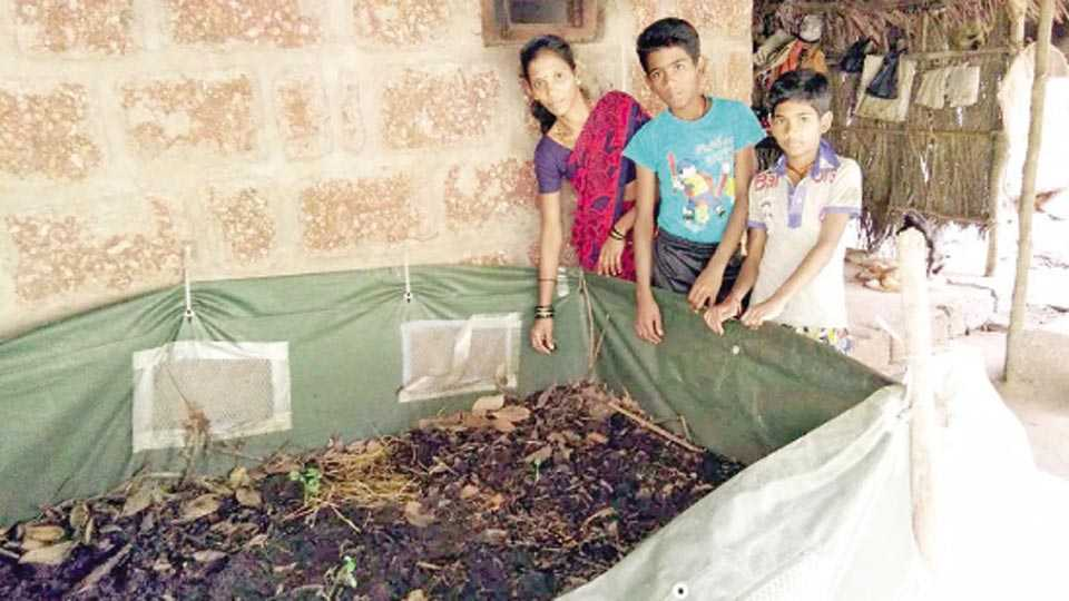 रत्नागिरी - दीप्ती शिंदे यांनी गांडूळ खतनिर्मितीतून उत्पन्नाचे साधन निर्माण केले आहे.