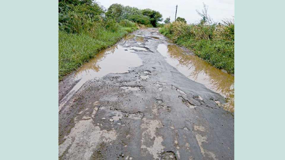जेऊर (ता. पुरंदर) - जेऊर-मांडकी रस्त्याची झालेली दुरवस्था.