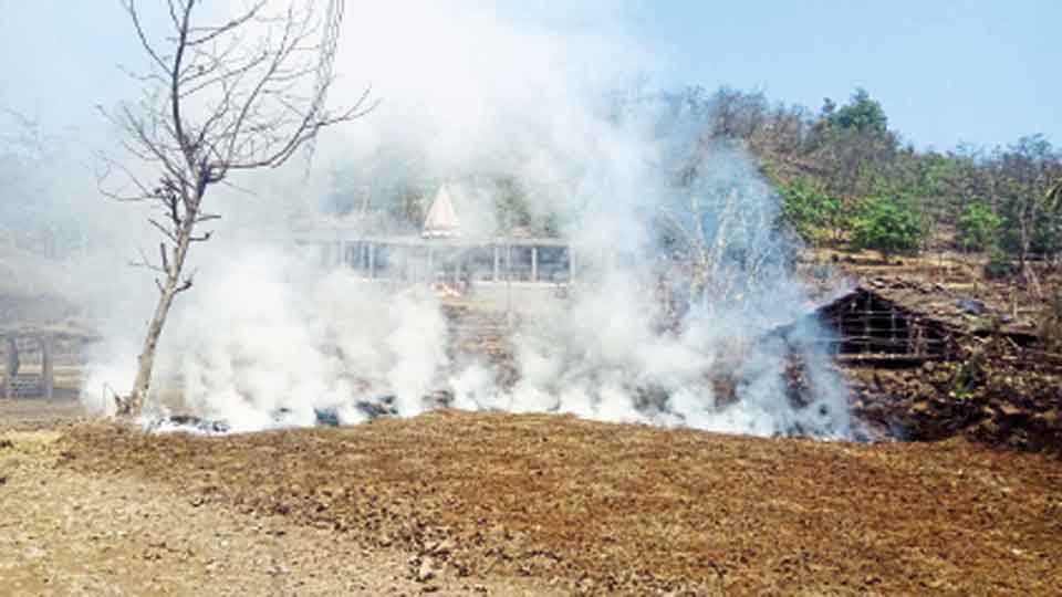 मंडणगड - भाजावळी तयार करून त्याला लावलेली आग आणि त्यामुळे निर्माण झालेले धुराचे लोट.