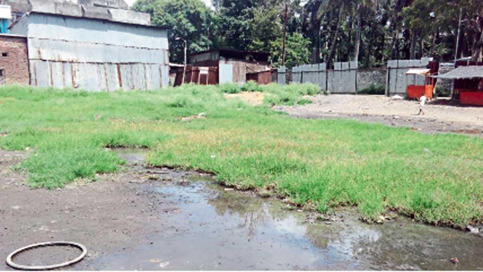 बागवानपुरा - मोकळे मैदान, त्यावर साचलेले पावसाचे पाणी व अस्वच्छता यामुळे परिसरात डासांचे प्रमाण वाढत आहे.