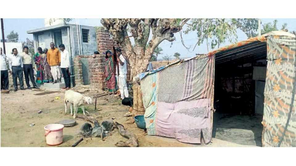 पवारवाडी (ता. इंदापूर) - सुरेश वाघमोडे व रामचंद्र वाघमोडे यांनी (डावीकडे) उंचवट्यावर बांधलेलं शौचालय आणि (उजवीकडे) राहण्यासाठीचे पालवजा झोपडी.