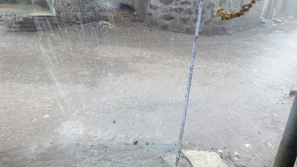 बीड - जिल्ह्यातील बहुतांश भागात बुधवारी वादळी वाऱ्यासह अवकाळी पावसाने हजेरी लावली.