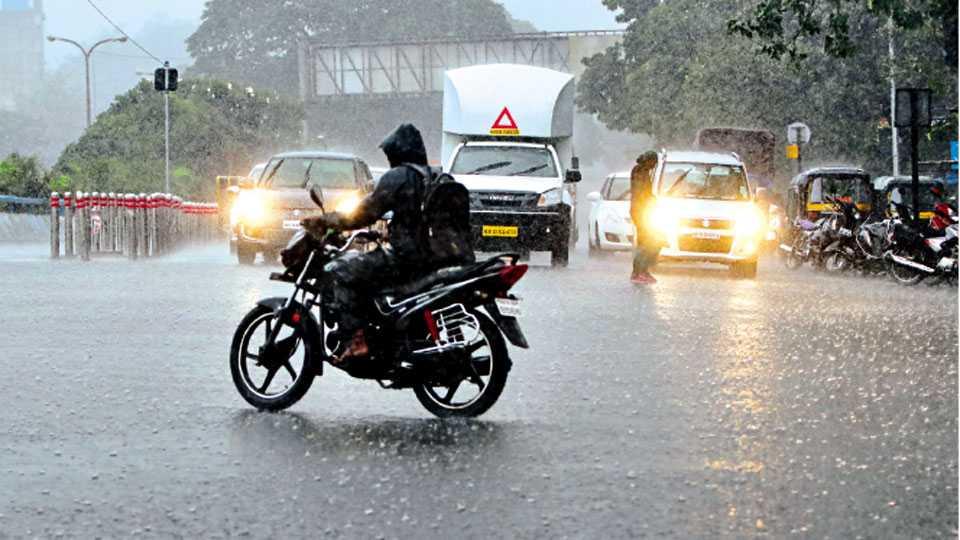 पिंपरी चौक - शहर व परिसरात शुक्रवारी या हंगामातील सर्वाधिक मुसळधार पाऊस झाला.