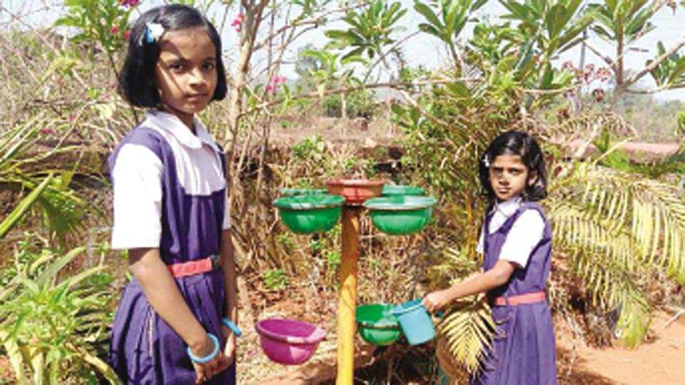 राजापूर - शाळा परिसरामध्ये पक्ष्यांसाठी ठेवलेल्या कुंड्यांमध्ये पाणी आणि खाद्य विद्यार्थीच ठेवतात.