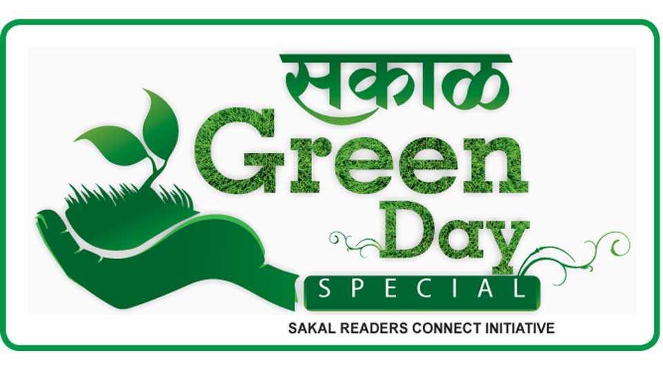 Sakal-Green-Day