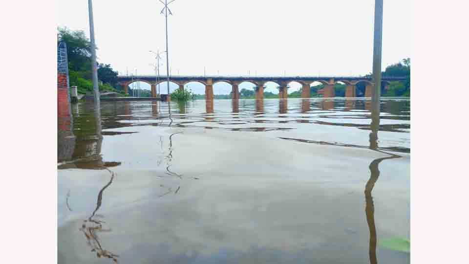Water has been released by 2100 cusecs from Koyna dam at Sangali