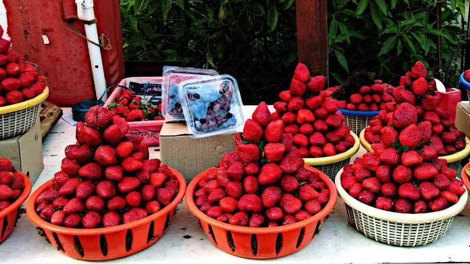 Strawberries,Black-Raspberr