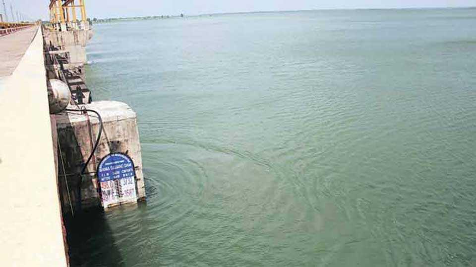 water increase in ujani dam