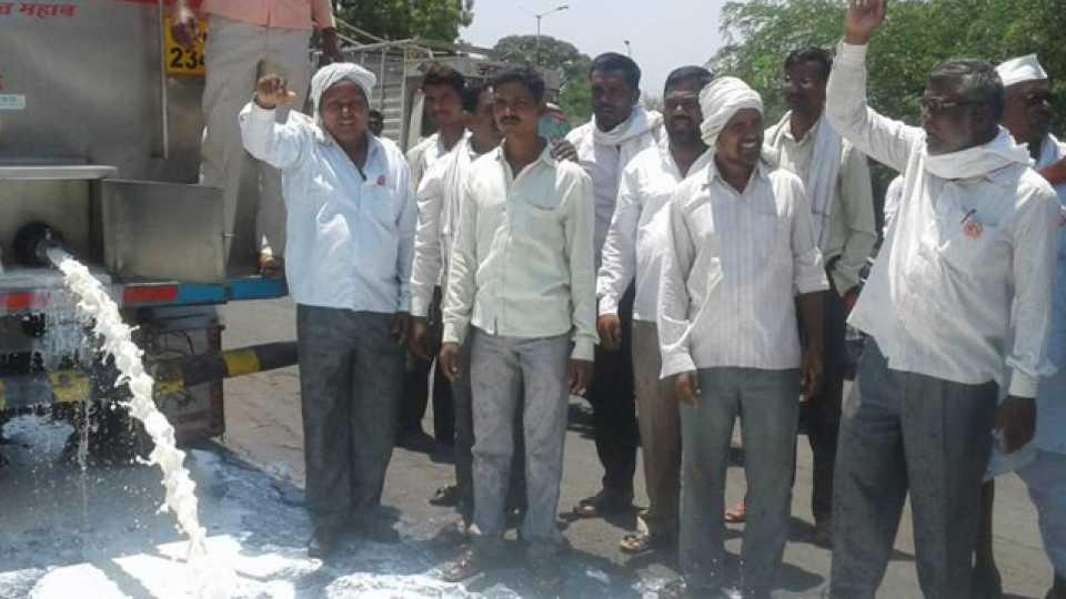 Breaking news Manvat news Sakal News Farmer strike