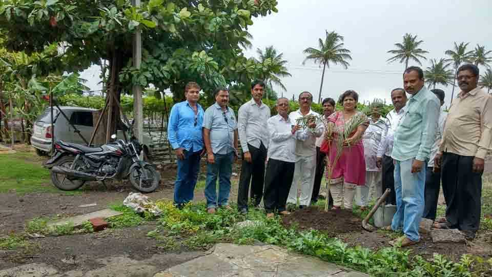 Plantation to Agar Amrapur from Cooperative Society