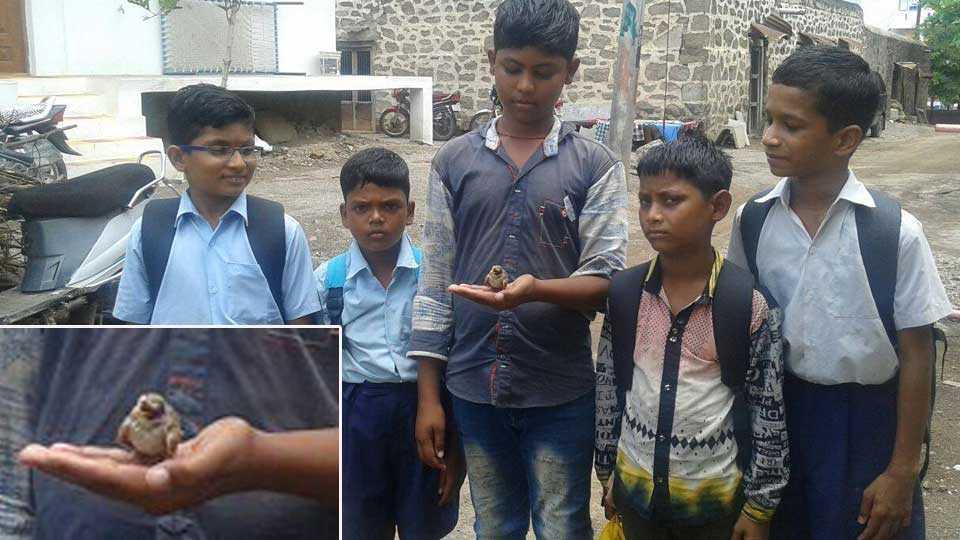 marathi news dhule news kapadne news sakal news school students