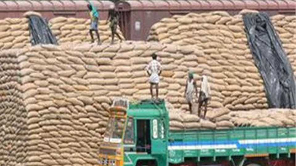grain transport