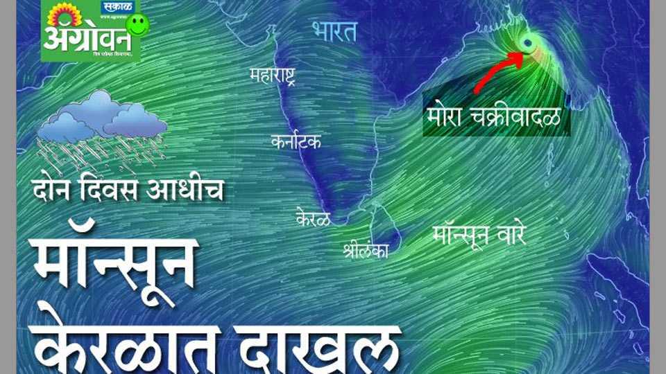 Monsoon rains arrive at southern Kerala coast, saysweather office