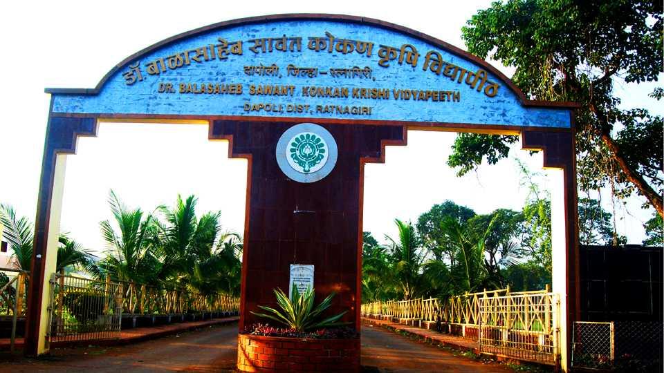 kokankrushi