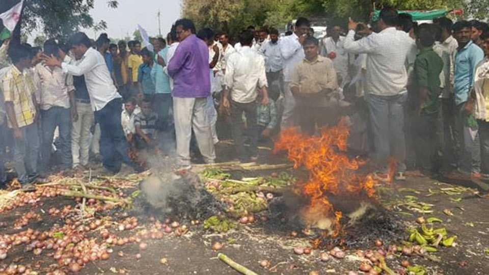 jalgaon news maharashtra news farmers strike day 3
