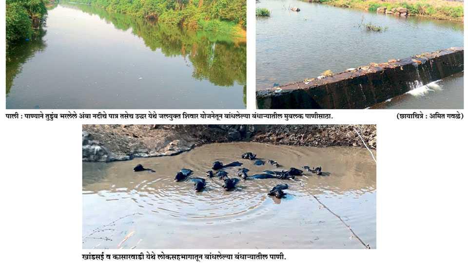 Irrigation area increased in Sudhagad taluka