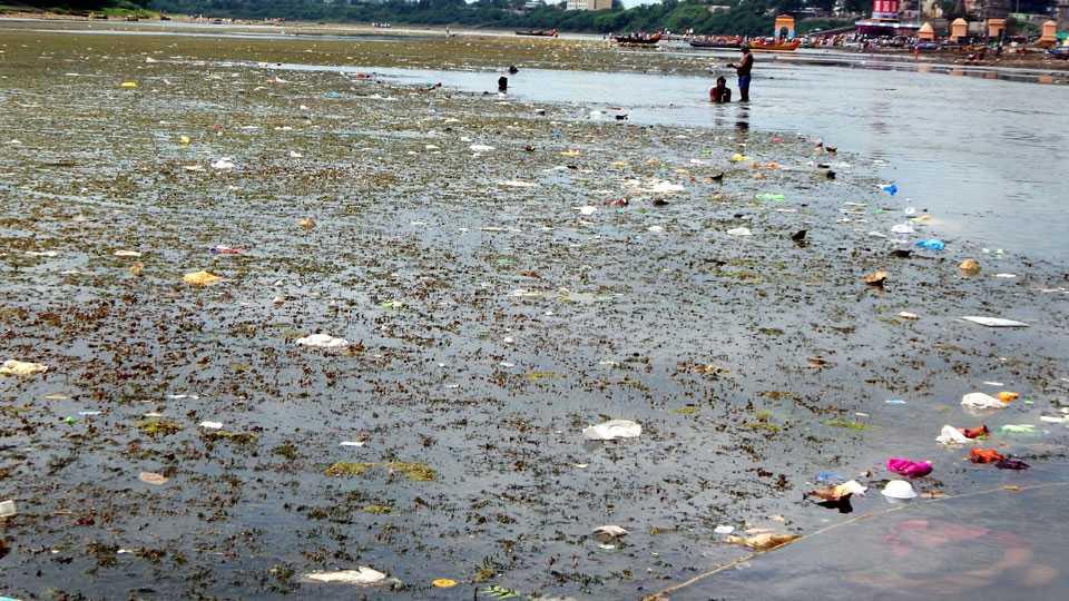 chandrabhaga river pollution
