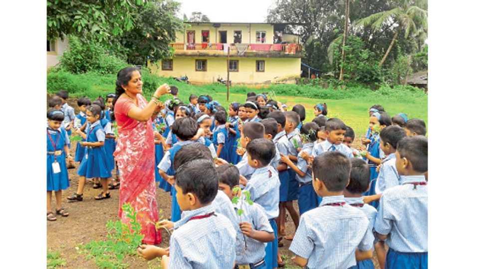 सती-चिंचघरी येथे निसर्गाच्या सान्निध्यात विद्यार्थ्यांना धडे देताना शिक्षक.